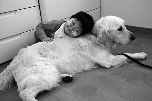 受到喜欢动物的父母遗传,悠月小弟弟也非常喜欢小动物.